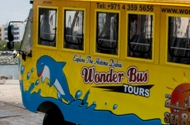 Duck Tours Dubai